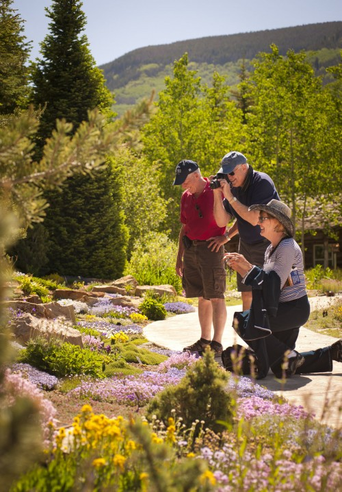 photography at the betty ford alpine gardens vail colorado. Cars Review. Best American Auto & Cars Review
