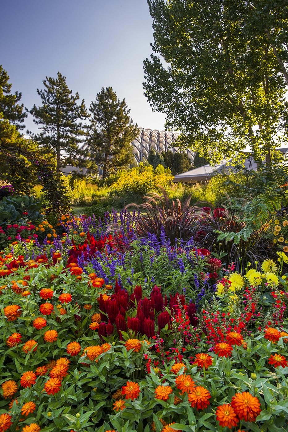 My Upcoming Photography Classes at The Denver Botanic